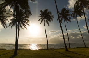 Reserva do Paiva recebe Corrida das Praias